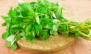 cut fenugreek on chopping board in kitchen